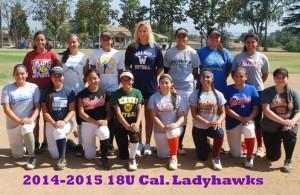 18U Ladyhawks Group_small2